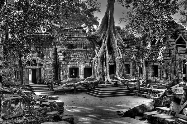 Ta Prohm temple in HDR. Very difficult to catch highligths and shadows so i tried in HDR